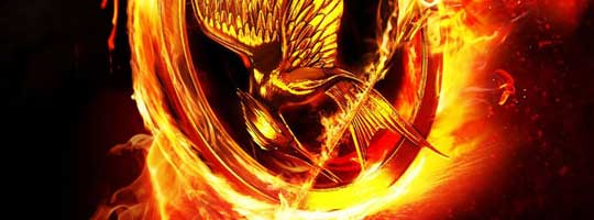 Hunger Games 3 Facebook Cover