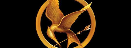 Hunger Games 4 Facebook Cover