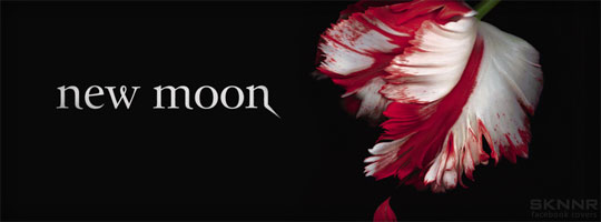 New Moon Facebook Cover