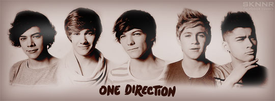 One Direction Facebook Cover
